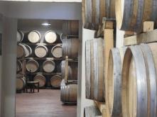 Cellar of Vino Poggio Amorelli